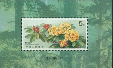 China, 1991, Flowers,  s\s